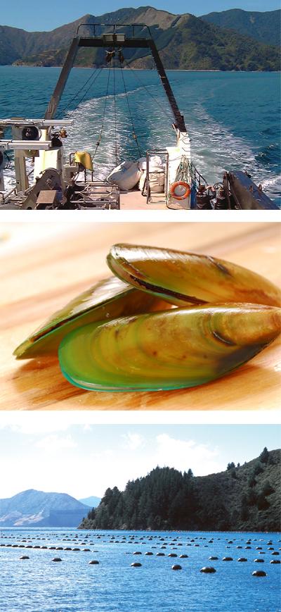 http://www.lyprinol.es/files/imagenes/noticias/images/trollboat.jpg